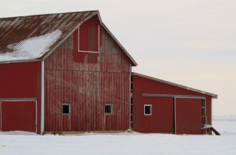 Winterizing-Your-Barn-Blog-Image.jpg
